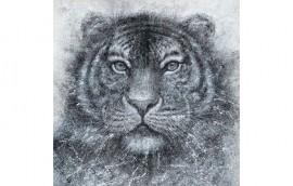 WHITE TIGER Dipinto 120x120